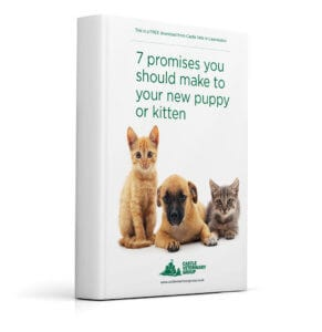 Pet advice guide for new pet owners - Castle Vets download