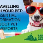 Getting a pet passport: Information for travelling with pets