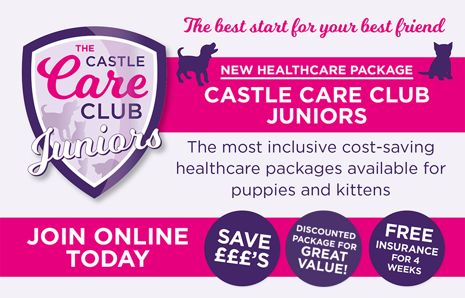 Join the Juniors Club and give your puppy or kitten the best start ever!