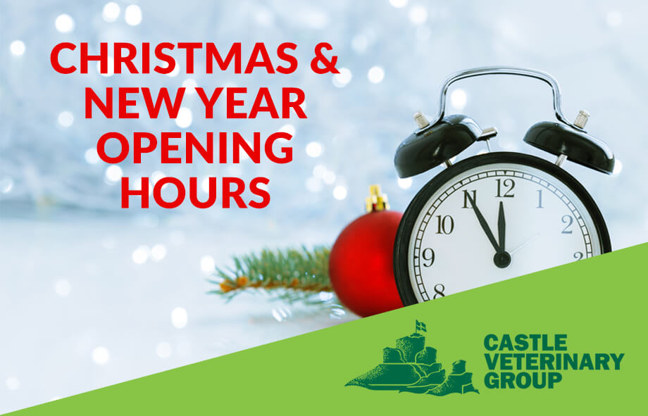Christmas & New Years Opening Hours