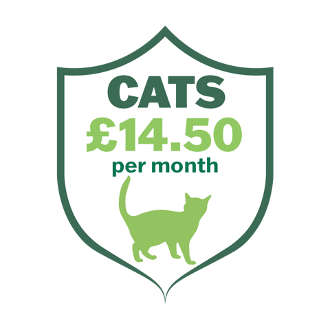 The Castle Care Club for Cats gives real savings on life-long pet healthcare