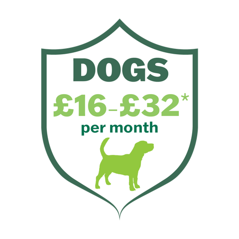 The Castle Care Club for Dogs gives real savings on life-long pet healthcare