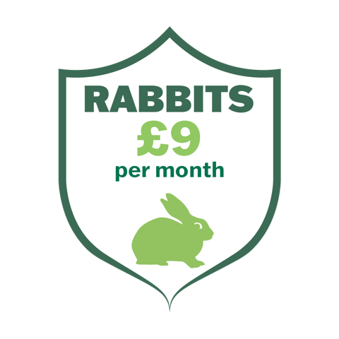 The Castle Care Club for rabbits gives real savings on life-long pet healthcare
